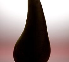Pear by IanJTurner