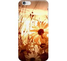 Sunset Daisies iPhone Case/Skin