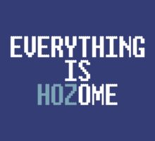 EVERYTHING IS HOZOME by fancitytees