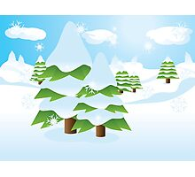Fir tree on slope Photographic Print