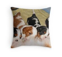 Cavalier Puppies at the Milk Bar  Throw Pillow