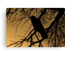Creepy Crow Canvas Print