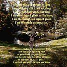 Native American Prayer by Judi Taylor