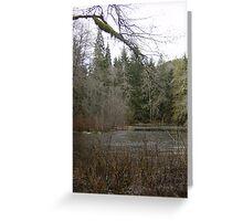 Gold Basin Mill Pond Greeting Card
