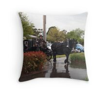 Last Ride of Freedom Throw Pillow