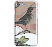 Lady Blackbird in the snow iPhone Case/Skin