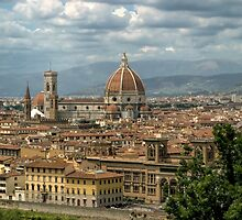 Skyline Florence, Italy by luxnimago