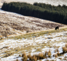Welsh Winter in the Brecon Beacons Sticker