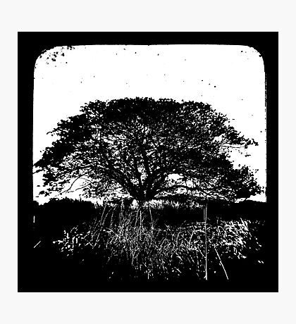 Another World TtV Photographic Print