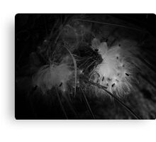 """""""Floating' Canvas Print"""