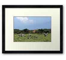 Animal Utopia Framed Print