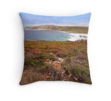 Wildflower season on the coast Throw Pillow