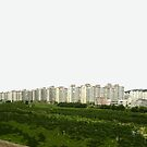korean landscape by Yuval Fogelson