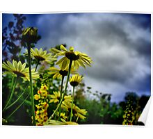 Flowers in the Breeze Poster