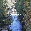 High Falls #2 by Tammy F