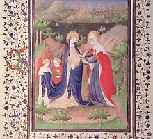 The Visitation by Bridgeman Art Library