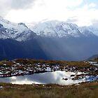 Hollyford Valley, Routeburn Track, New Zealand by aerdeyn