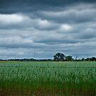 Farmland by Damiend