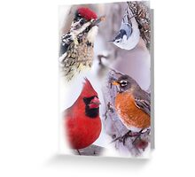 Variety of Birds In Winter Greeting Card