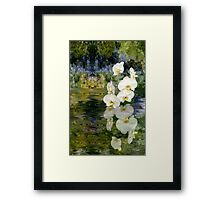 Water Orchids Framed Print