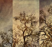birds and tree by Jill Auville