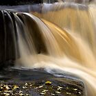 Water Flow 2 by Dave  Miller