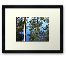 Saturday Garden Pond Framed Print