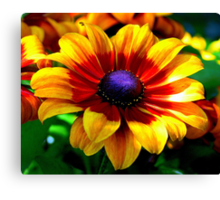 A Flower In Fall Coloring... Canvas Print