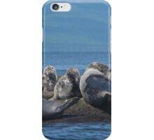 Grey Seals and Cormorants Off the Cabot Trail iPhone Case/Skin