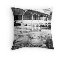 Le Lavoir Throw Pillow