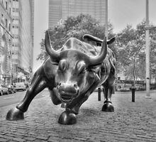 The Wall Street Bull by Anders Hollenbo