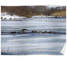 Weekapaug, Rhode Island - Winter 2015 - 2 Poster