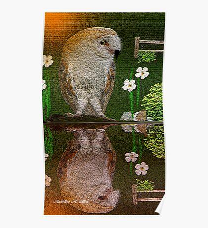 BARN OWL REFLECTION Poster