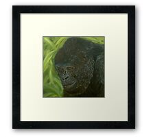 """If you could read my mind"" - Gorilla Oil painting Framed Print"