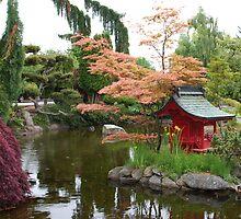 Asian Water Garden by Marjorie Wallace