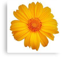 Bright Flower Canvas Print
