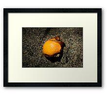 Untitled.00083 Framed Print