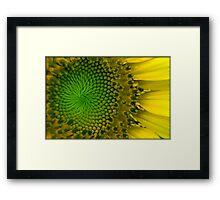 Untitled.00071 Framed Print