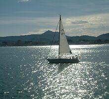 Sailing by Fay  Hughes