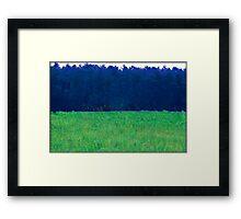 Untitled.00108 Framed Print