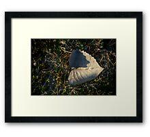 Untitled.00054 Framed Print