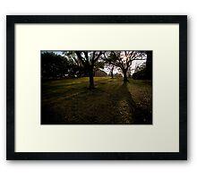 Untitled.00056 Framed Print