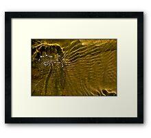 Untitled.00057 Framed Print