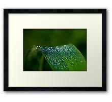 Untitled.00064 Framed Print