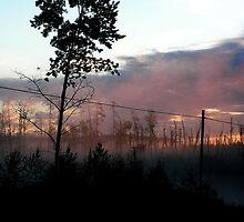 Northern Ontario Misty Sunrise by Geoffrey