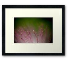 Untitled.00080 Framed Print