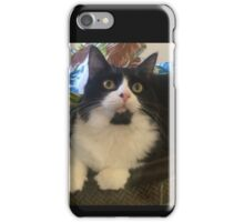 Cocoa The Black and White Kitten iPhone Case/Skin