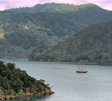 Discovering New Zealand by Larry Lingard-Davis