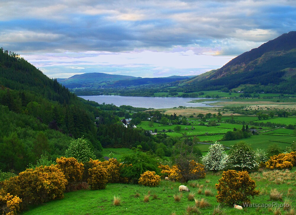 Bassenthwaite Lake by WatscapePhoto