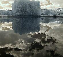 Mirage by George Parapadakis (monocotylidono)